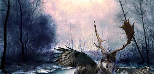Chimère – Le Loubou
